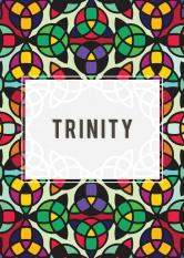 Trinity Red Wine Labels 30 Pack